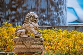 picture of lion  - Chinese Imperial Lion Guardian Lion stone Chinese style sculpture in chinese temple garden yellow split tone - JPG