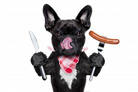 foto of sticking out tongue  - hungry french bulldog dog with tableware or utensils ready to eat dinner or lunch with a sausage tongue sticking out isolated on white background - JPG