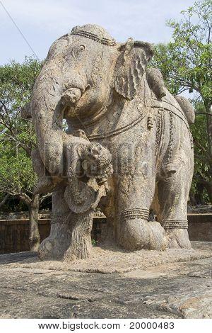 Olifant opheffing Warrior