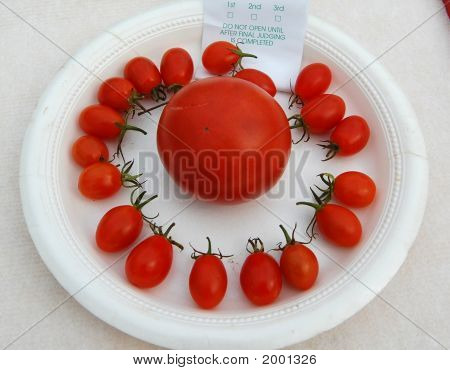 Circle Of Cherry Tomatoes