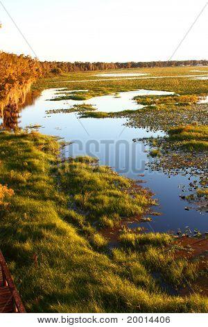 Lake Arbuckle - Florida