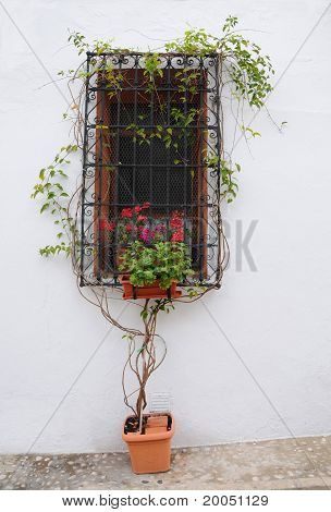 Mediterranean Style Window in Spain