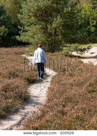 Middle Aged Woman Walking In Forest.