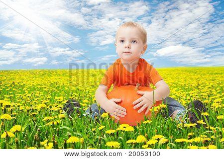 Child In Dandelion Flowers Field, Holding Pumpkin
