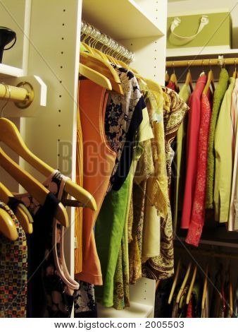 Cropped Shot Of Womans Closet