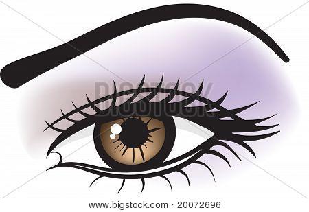 Female Brown Eye