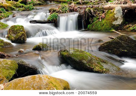 A Mountain Stream In The Spring