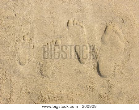 Four Footprints In Beach Sand