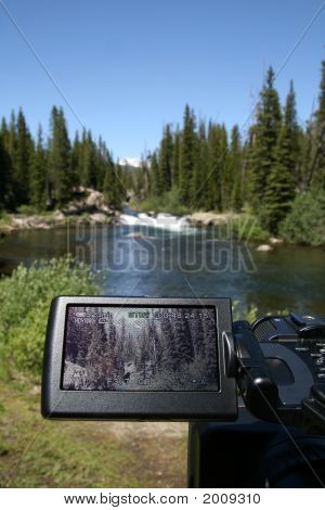 Filming Nature