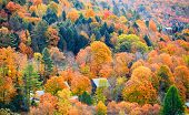 Fall foliage in Vermont mountains poster