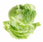 foto of iceberg lettuce  - Iceberg Lettuce on an Isolated White Background - JPG