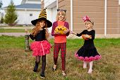 Halloween kids with treats walking down lawn in the yard after trick-or-treat fun poster