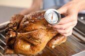 Young woman measuring temperature of whole roasted turkey with meat thermometer poster