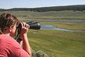 stock photo of lamar  - Lady with binoculars looking for wildlife at Hayden valley in Yelowstone National park - JPG