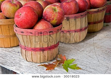 fall apples in baskets