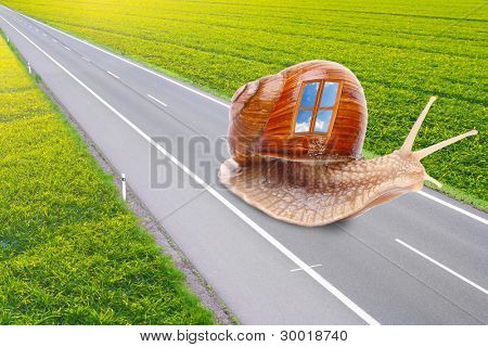Funny picture of a speedy snail with mobile home. Easy travel metaphor. Traveling business concept.