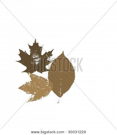 Fall Brown Grunge Leaves