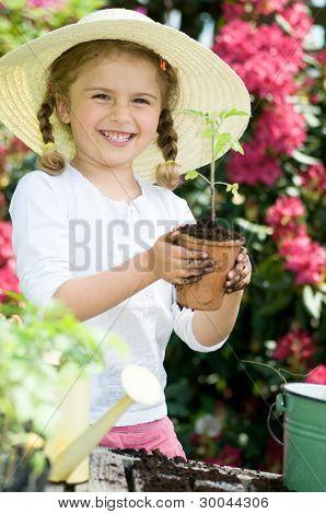 Gardening, planting - Lovely gardener girl planting seedling into the flowerpot