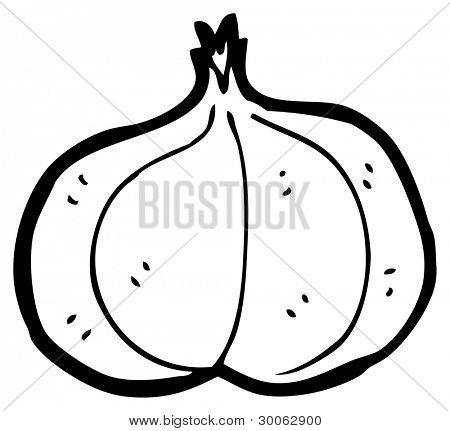 bulb of garlic cartoon