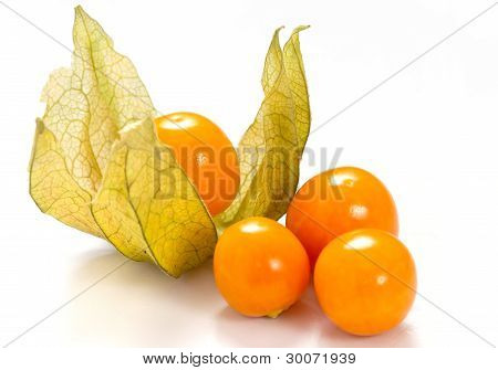 physalis fruit