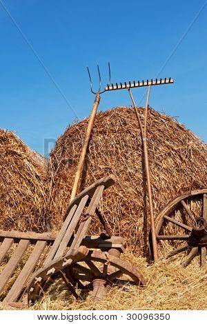 Agriculture Background.