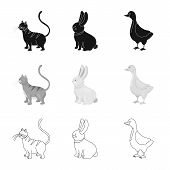 Isolated Object Of Breeding And Kitchen  Logo. Collection Of Breeding And Organic  Vector Icon For S poster