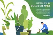 Man Growing Plant, Green Houseplants In Pots And Sample Text. Leaves, Nature, Agriculture Concept. P poster