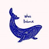 Vaquita Marina Blue Whale Sealife  Vector Illustration poster