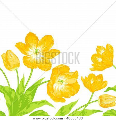 Tulips Bouquet, Seamless Border Composition