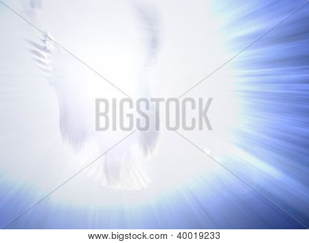 Angel Light Being