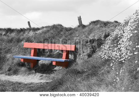 Red And Blue Bench In A Black And White Background
