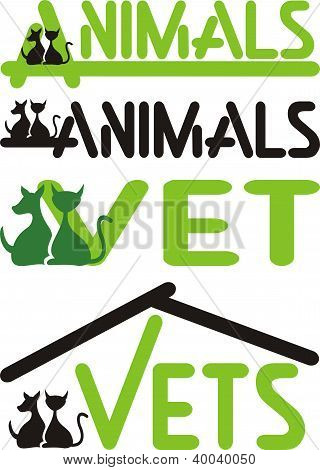 vet, animals - cat and dog