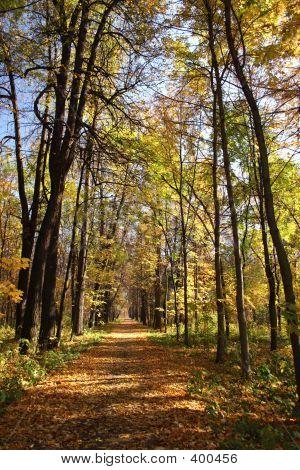 Herbst Avenue.