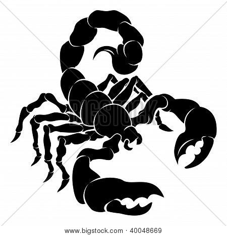 Stylised Scorpion Illustration