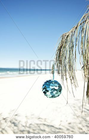 christmas ball hangs from a tree at the beach