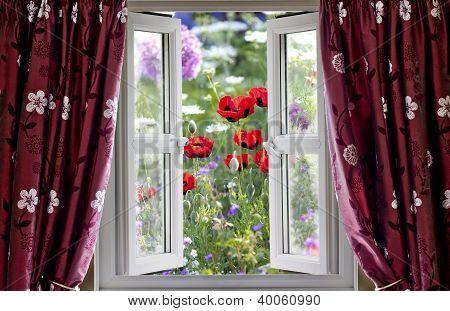 Open Window View Onto Wild Flower Garden