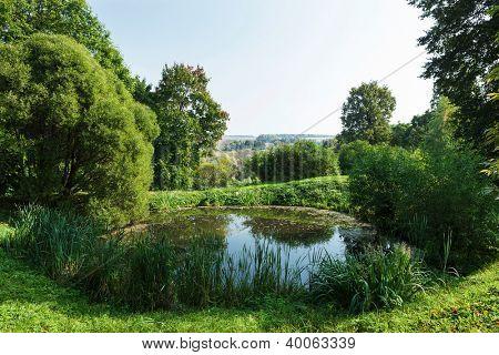 a small pond a bright sunny day