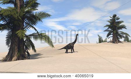 walking brachiosaurus on sand terrain