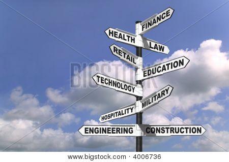 Ten Career Paths
