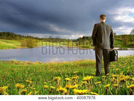 businessman on a meadow