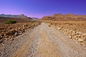foto of samaria  - Dirt Road in Sand Hills of Samaria Israel - JPG