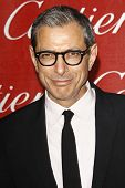 PALM SPRINGS, CA - JAN 7: Jeff Goldblum at the 23rd Annual Palm Springs International Film Festival