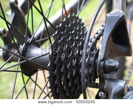 Sprocket of a Bicycle