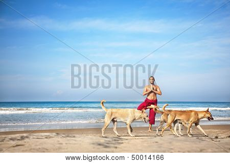 Yoga And Dogs