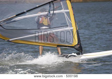 Sailboarder