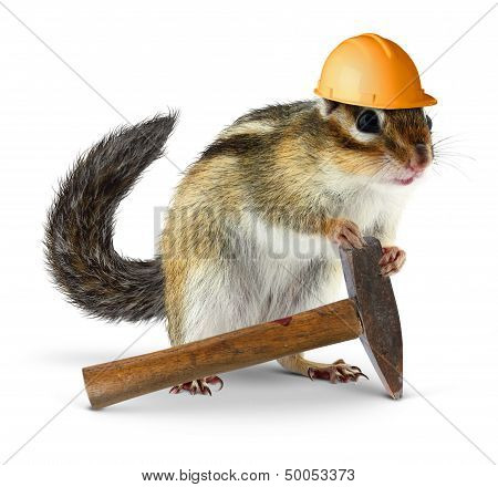 Chipmunk Builder, Reconstruction Concept