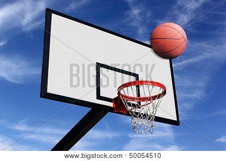 Panel Of Basketball