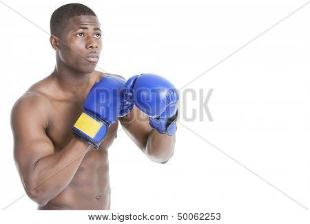 Young boxer wearing boxing gloves in fighting stance over gray background