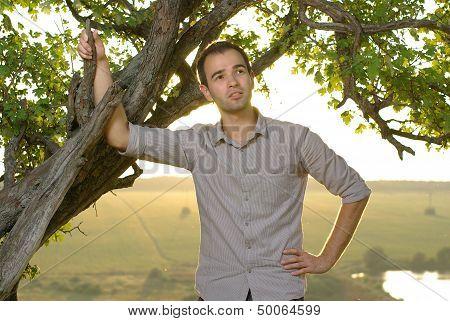 Guy under tree