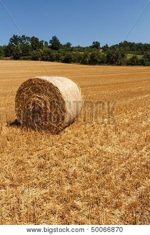 Landscape With Straw Bale